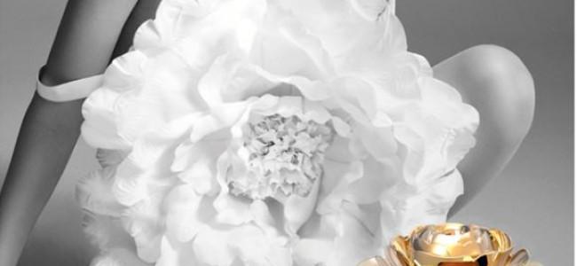FROM KAVIAR GAUCHE WITH LOVE – DAS ERSTE EAU DE PARFUM