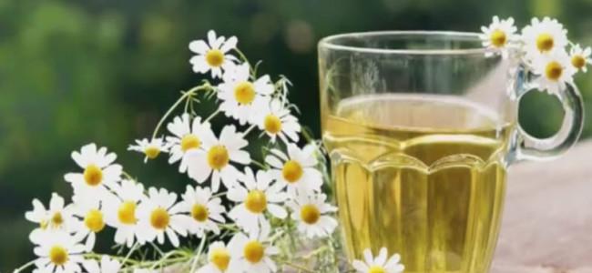 Tee ist eines der beliebtesten Getränke der Welt