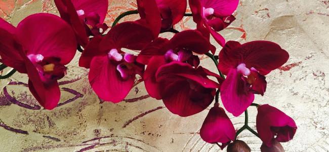 Kunstpflanzen werden immer beliebter