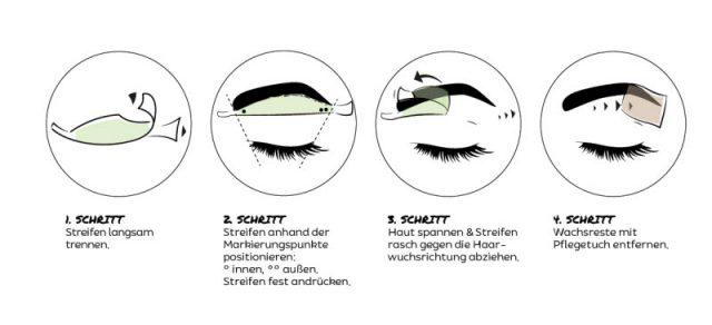 Augenbrauen wachsen